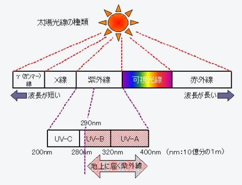 太陽光線の種類
