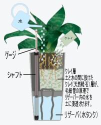 底面灌水鉢のしくみ